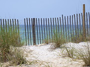 Beach Fence Metal Prints - Beach Fence Metal Print by James Granberry