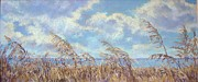 Donna Shortt Art - Beach Grasses by Donna Shortt