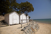 Demoiselles Metal Prints - Beach Huts 2 Metal Print by Stephane Grossin