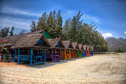 Wooden Prints - Beach Huts Print by Adrian Evans