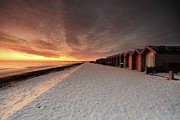In A Row Art - Beach Huts In Snow At Blyth by Tom Hill