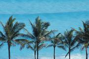 Mexican Landscapes Prints - Beach In Cancun Print by Axiom Photographic
