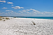 Susan Leggett Prints - Beach Landscape Print by Susan Leggett