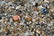 Sand Photography Prints - Beach Stones Print by Linda Sannuti