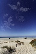 Constellations Metal Prints - Beach Under A Full Moon Metal Print by Laurent Laveder