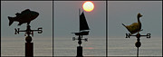 Weathervane Posters - Beach Weather Poster by Bill Cannon