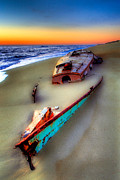 Pea Island Prints - Beached Beauty Print by Dan Carmichael