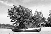 Canoe Originals - Beached Canoe by Christopher White