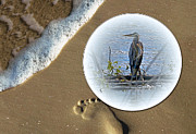 Great Digital Art Originals - Beached Heron by Sue Stefanowicz