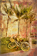 Bicycle Photo Framed Prints - Beachy Keen Framed Print by Debra and Dave Vanderlaan