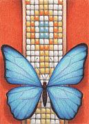 Insect Drawings Prints - Beaded Morpho Print by Amy S Turner