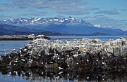 Berge Art - Beagle Channel - Tierra del Fuego by Juergen Weiss
