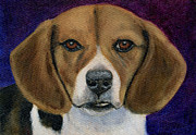 Beagle Prints Posters - Beagle Puppy Poster by Michelle Wrighton