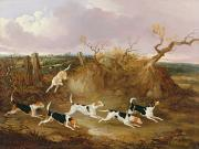 Hound Paintings - Beagles in Full Cry by John Dalby
