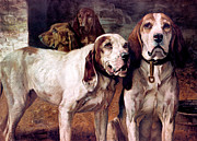 Hunting Prints - Bear Dogs Without Border Print by H R Poore