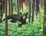 Wendy Butcher Art - Bear In The Woods by Wendy Butcher