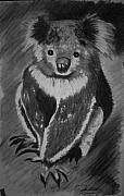 Koala Drawings Posters - Bear it All  Poster by Douglas Kriezel