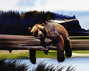 Kodiak Digital Art Prints - Bear Nap Print by Robert Foster