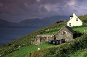 Farm Structure Prints - Beara Peninsula, County Cork, Ireland Print by Richard Cummins