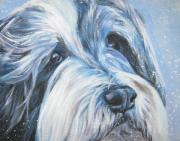 Collie Painting Framed Prints - Bearded Collie up close in snow Framed Print by L A Shepard