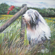 Cardinal Paintings - Bearded Collie with Cardinal by L AShepard