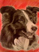 Dogs Drawings - Beautiful Ben by Diane Leuzzi