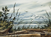 Mt Baker Framed Print Framed Prints - Beautiful Coast Framed Print by James Williamson