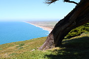 Headlands Photos - Beautiful Coastline of Point Reyes California . 7D16033 by Wingsdomain Art and Photography