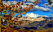 Rocky Mountains Digital Art - Beautiful Colorado by Ellen Lacey