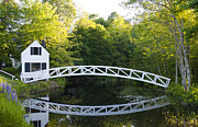 Tree Over Water Prints - Beautiful Curved Bridge Print by Bill Bachmann and Photo Researchers