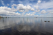 Beautiful Day In Tampa Print by Carol Groenen