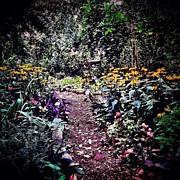 Landscapes Art - Beautiful Garden Path - New York City by Vivienne Gucwa