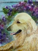 Golden Retriever Mixed Media - Beautiful Golden by Claire Bull