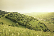 Lush Foliage Prints - Beautiful Green Hills At Sunset Print by Photo by Steffen Egly