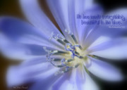 Blue Flowers Photos - Beautiful In Its Time by Debra Straub