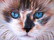Cats Drawings Metal Prints - Beautiful Mia Metal Print by Elena Kolotusha