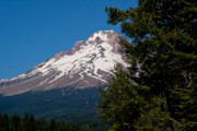 Mt Hood Digital Art - Beautiful Mt Hood  Oregon by Paul Donihue
