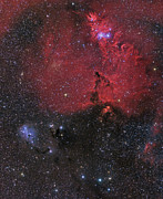 Reflection Nebula Posters - Beautiful Nebula In Monoceros Poster by John Davis