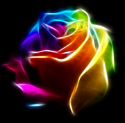 Petal Digital Art - Beautiful Rose of Colors No2 by Pamela Johnson