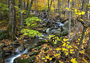 Fall Scenes Photo Originals - Beautiful Vermont Scenery 19 by Paul Cannon