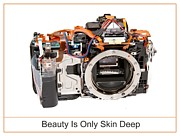 Dslr Prints - Beauty Is Only Skin Deep Print by Max Blinkhorn