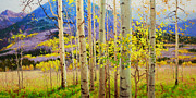 Fall Leaves Painting Prints - Beauty of Aspen Colorado Print by Gary Kim