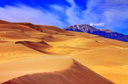 Sanddunes Photo Posters - Beauty of The Dunes Poster by Scott Mahon