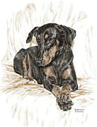 Pinscher Drawings Posters - Beauty Pose - Doberman Pinscher Dog with Natural Ears Poster by Kelli Swan