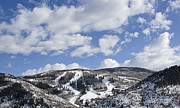 Runs Posters - Beaver Creek Resort - Arrowhead Mountain - Colorado Poster by Brendan Reals