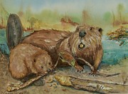 Beaver Pond Paintings - Beavers by Barbara McGeachen