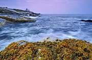 Water Flowing Framed Prints - Beavertail Lighthouse, Jamestown, Rhode Island Framed Print by Shobeir Ansari