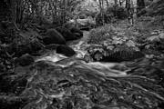 Becky Falls Down Stream Print by Jay Lethbridge