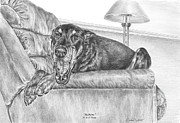 Pinscher Drawings Posters - Bedtime - Doberman Pinscher Dog Art Print Poster by Kelli Swan