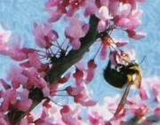 Pink Flower Branch Prints - Bee to the Blossom Print by Jeff Kolker